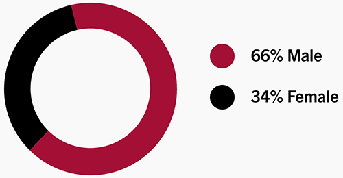 Circle graph showing gender breakdown percentage of 66% Male and 34% Female.